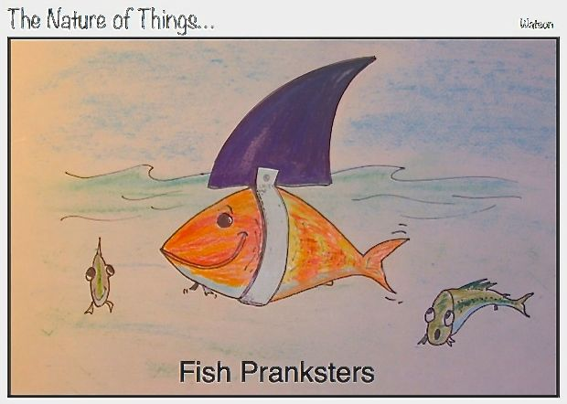 web1-fish-pransters