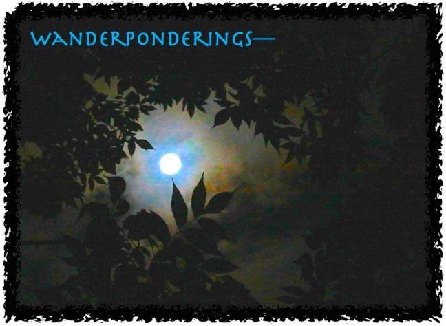 wanderpondering
