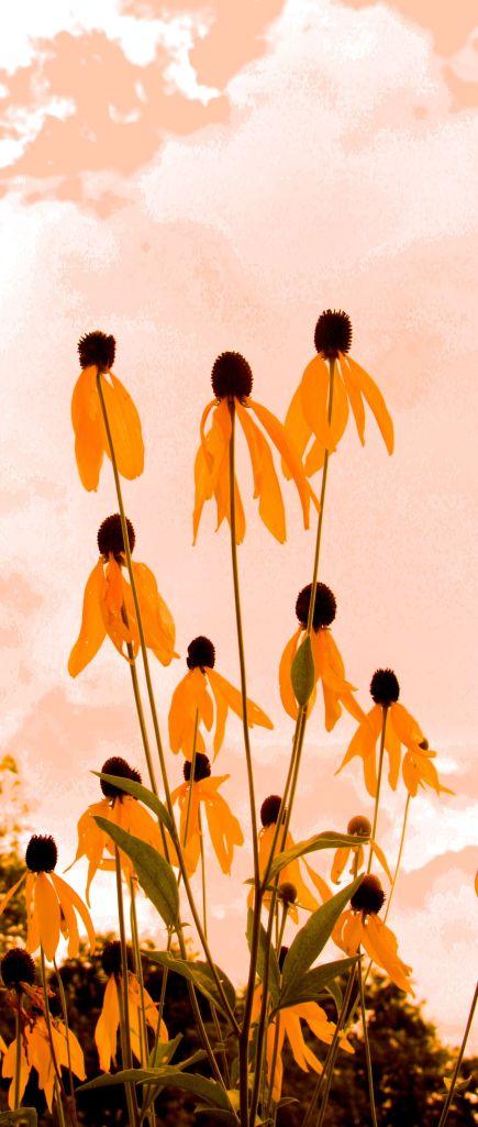 ART- FLOWERS