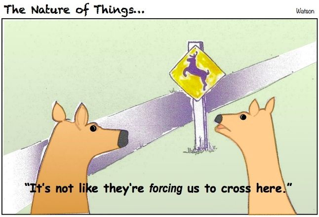 CARTOON-DEER CROSSING