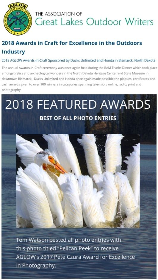 AGLOW-2018-BEST OF SHOW-PHOTOGRAPHY