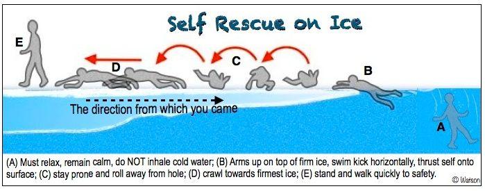 illust-ice rescue-2