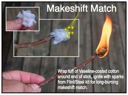 surv-cotton twig match process