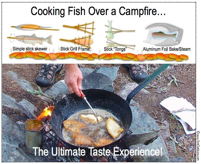 ILLUST-COOKING FISH OVER CAMPFIRE